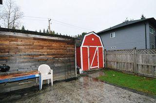 Photo 11: 20384 KENT Street in Maple Ridge: Southwest Maple Ridge House for sale : MLS®# R2221127