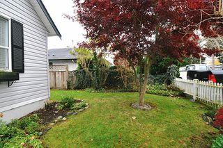 Photo 12: 20384 KENT Street in Maple Ridge: Southwest Maple Ridge House for sale : MLS®# R2221127