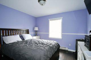 Photo 6: 20384 KENT Street in Maple Ridge: Southwest Maple Ridge House for sale : MLS®# R2221127
