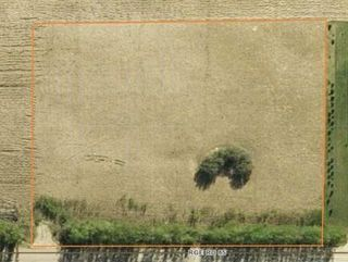 Photo 2: Twp Rd 501/ Rge Rd 85: Rural Brazeau County Rural Land/Vacant Lot for sale : MLS®# E4104632