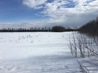 Photo 3: Twp Rd 501/ Rge Rd 85: Rural Brazeau County Rural Land/Vacant Lot for sale : MLS®# E4104632