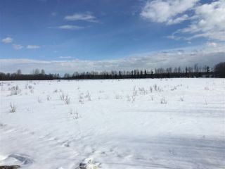 Photo 4: Twp Rd 501/ Rge Rd 85: Rural Brazeau County Rural Land/Vacant Lot for sale : MLS®# E4104632
