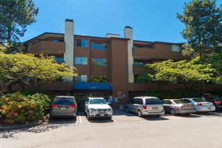 """Photo 1: 214 7295 MOFFATT Road in Richmond: Brighouse South Condo for sale in """"DORCHESTER CIRCLE"""" : MLS®# R2279099"""
