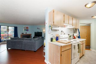 """Photo 8: 214 7295 MOFFATT Road in Richmond: Brighouse South Condo for sale in """"DORCHESTER CIRCLE"""" : MLS®# R2279099"""