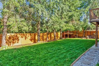 Photo 19: 22631 LEE Avenue in Maple Ridge: East Central House for sale : MLS®# R2315971