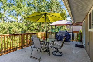 Photo 20: 22631 LEE Avenue in Maple Ridge: East Central House for sale : MLS®# R2315971