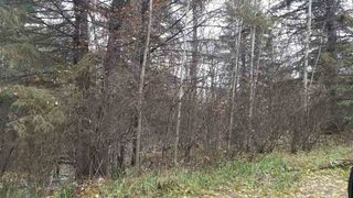 Photo 3: 16 51330 RGE RD 271: Rural Parkland County Rural Land/Vacant Lot for sale : MLS®# E4139894