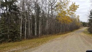 Photo 1: 16 51330 RGE RD 271: Rural Parkland County Rural Land/Vacant Lot for sale : MLS®# E4139894