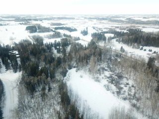 Photo 6: 16 51330 RGE RD 271: Rural Parkland County Rural Land/Vacant Lot for sale : MLS®# E4139894