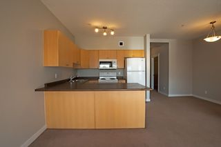 Photo 5: 307 11425 105 Avenue in Edmonton: Zone 08 Condo for sale : MLS®# E4146848