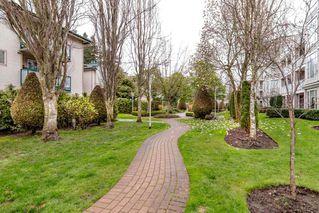 "Photo 18: 107 12155 191B Street in Pitt Meadows: Central Meadows Condo for sale in ""Edge Park Manor"" : MLS®# R2357824"