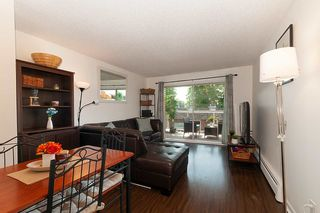 "Main Photo: 204 827 W 16TH Street in North Vancouver: Mosquito Creek Condo for sale in ""Cedarcrest"" : MLS®# R2376617"