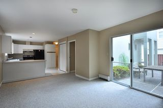 Photo 6:  in Vancouver: Marpole Home for sale ()  : MLS®# V782648