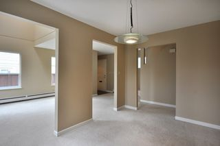 Photo 4:  in Vancouver: Marpole Home for sale ()  : MLS®# V782648