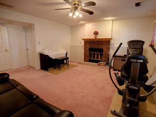 Photo 13: 236 Lago Lindo Crescent in Edmonton: Zone 28 House for sale : MLS®# E4162379