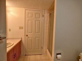 Photo 15: 236 Lago Lindo Crescent in Edmonton: Zone 28 House for sale : MLS®# E4162379