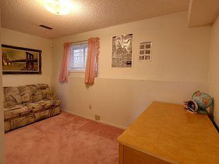 Photo 12: 236 Lago Lindo Crescent in Edmonton: Zone 28 House for sale : MLS®# E4162379