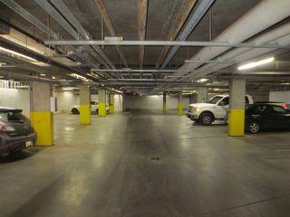 Photo 16: 205 10121 80 Avenue in Edmonton: Zone 17 Condo for sale : MLS®# E4165101