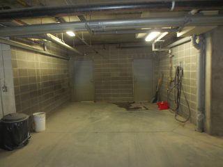 Photo 17: 205 10121 80 Avenue in Edmonton: Zone 17 Condo for sale : MLS®# E4165101