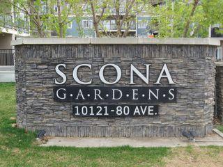 Photo 21: 205 10121 80 Avenue in Edmonton: Zone 17 Condo for sale : MLS®# E4165101