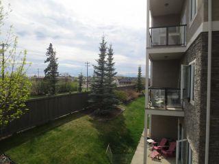 Photo 12: 205 10121 80 Avenue in Edmonton: Zone 17 Condo for sale : MLS®# E4165101