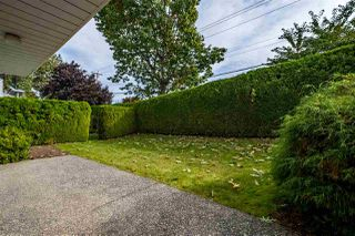 """Photo 18: 59 3054 TRAFALGAR Street in Abbotsford: Central Abbotsford Townhouse for sale in """"Whispering Pines"""" : MLS®# R2409495"""