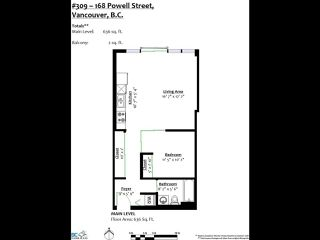 Photo 20: 309 168 POWELL STREET in Vancouver: Downtown VE Condo for sale (Vancouver East)  : MLS®# R2439616