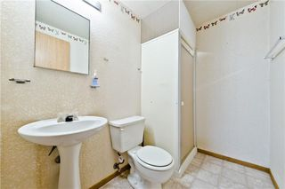 Photo 29: 132 DEER RIDGE Close SE in Calgary: Deer Ridge Semi Detached for sale : MLS®# C4303155