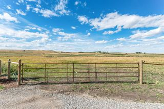 Photo 41: 32158 402 Avenue W: Rural Foothills County Detached for sale : MLS®# A1029256
