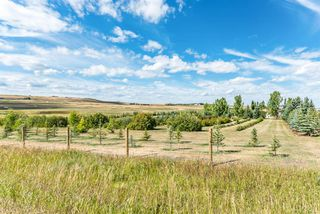 Photo 43: 32158 402 Avenue W: Rural Foothills County Detached for sale : MLS®# A1029256