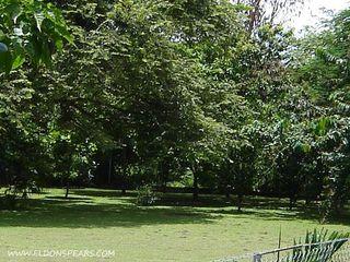 Photo 16:  in Nueva Gorgona: Residential for sale : MLS®# Gorgona