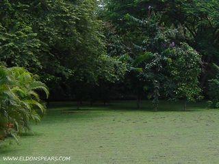 Photo 14:  in Nueva Gorgona: Residential for sale : MLS®# Gorgona