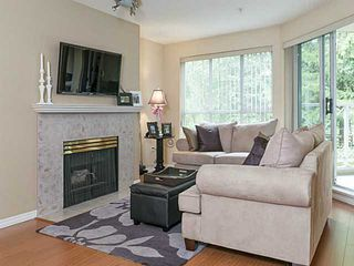 Photo 3: # 213 2551 PARKVIEW LN in Port Coquitlam: Central Pt Coquitlam Condo for sale : MLS®# V1012926