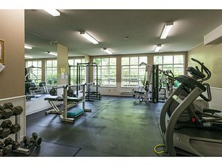 Photo 18: # 213 2551 PARKVIEW LN in Port Coquitlam: Central Pt Coquitlam Condo for sale : MLS®# V1012926