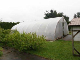 Photo 4: 695 MCKENZIE Road in Abbotsford: Poplar House for sale : MLS®# F1415231