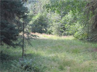 Photo 4: BLK B LITTLE LAKE Road in Williams Lake: Horsefly Land for sale (Williams Lake (Zone 27))  : MLS®# N247072