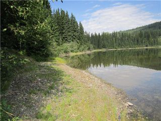 Photo 5: BLK B LITTLE LAKE Road in Williams Lake: Horsefly Land for sale (Williams Lake (Zone 27))  : MLS®# N247072
