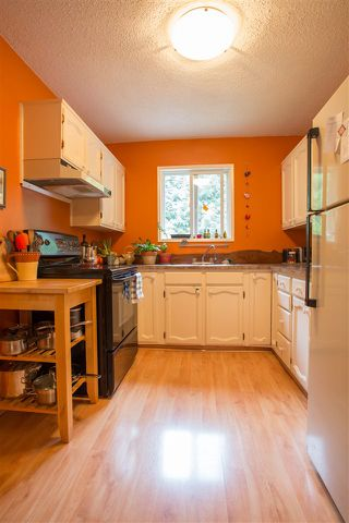 Photo 3: 41830 HOPE Road in Squamish: Brackendale House for sale : MLS®# R2069718