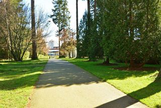 """Photo 14: 206 1740 SOUTHMERE Crescent in Surrey: Sunnyside Park Surrey Condo for sale in """"Spinnaker"""" (South Surrey White Rock)  : MLS®# R2072461"""