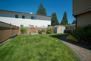 Photo 16: 3369 FIR Street in Port Coquitlam: Lincoln Park PQ House for sale : MLS®# R2082296