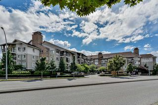 Photo 1: 429 8915 202 Street in Langley: Walnut Grove Condo for sale : MLS®# R2084167