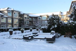 "Photo 11: 213 18818 68 Avenue in Surrey: Clayton Condo for sale in ""Calera"" (Cloverdale)  : MLS®# R2127591"