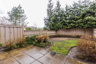 "Photo 20: 38 21661 88 Avenue in Langley: Walnut Grove Townhouse for sale in ""Monterra"" : MLS®# R2156136"