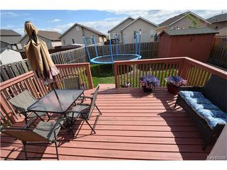 Photo 22: 16 Paul Martin Drive in Winnipeg: Mission Gardens Residential for sale (3K)  : MLS®# 1713470