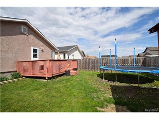 Photo 23: 16 Paul Martin Drive in Winnipeg: Mission Gardens Residential for sale (3K)  : MLS®# 1713470