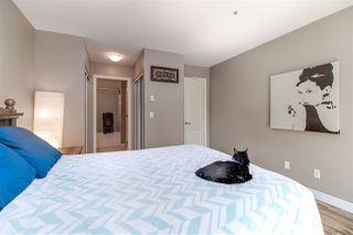 """Photo 11: 203 22230 NORTH Avenue in Maple Ridge: West Central Condo for sale in """"SOUTHRIDGE TERRACE"""" : MLS®# R2200081"""