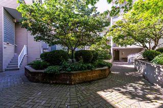 Photo 15: 423 528 ROCHESTER Avenue in Coquitlam: Coquitlam West Condo for sale : MLS®# R2203123
