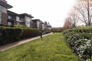 "Photo 16: 905 3102 WINDSOR Gate in Coquitlam: New Horizons Condo for sale in ""Celadon by Polygon"" : MLS®# R2255405"
