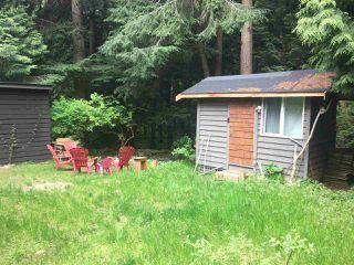 Photo 6: 1001 METCALFE Road: Roberts Creek House for sale (Sunshine Coast)  : MLS®# R2265506