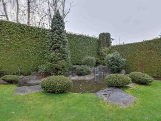 Photo 16: 6840 DONALD Road in Richmond: Granville House for sale : MLS®# R2284611